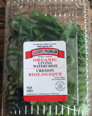 This is the watercress I bought at Wegmans