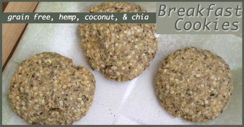 hemp breakfast cookies