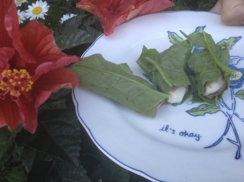 The second appetizer was brie wrapped in prosciutto and spinach---this was pretty salty, until we added the spinach leaf---then it was awesome!