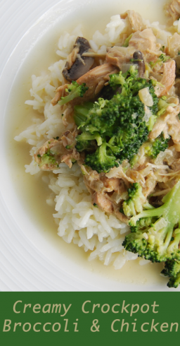 broccoli and chicken 1