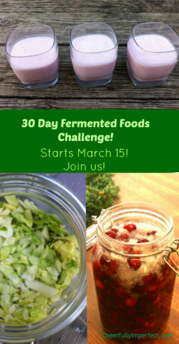 fermented-foods-challenge