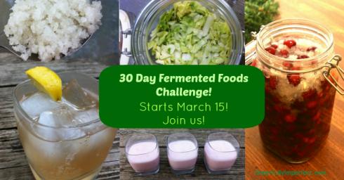fermentedfoodschallengefacebook